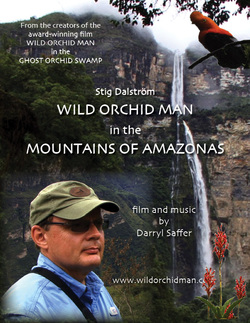 wild orchid full movie youtube